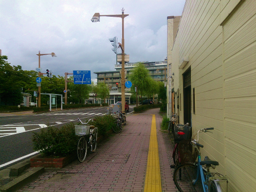 DSC_8778.jpg